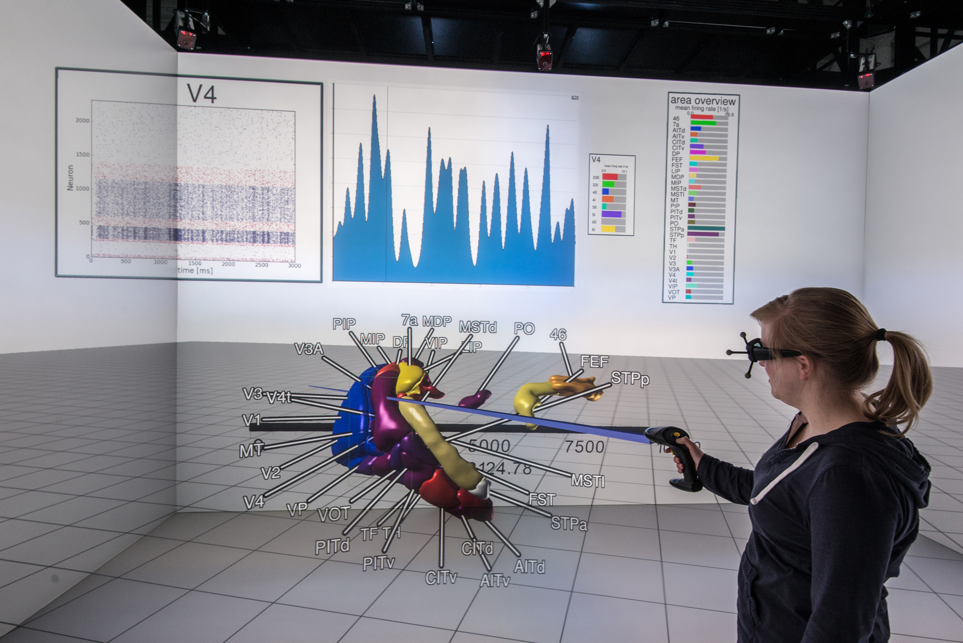Interactive Exploration of simulated brain areas in the aixCAVE
